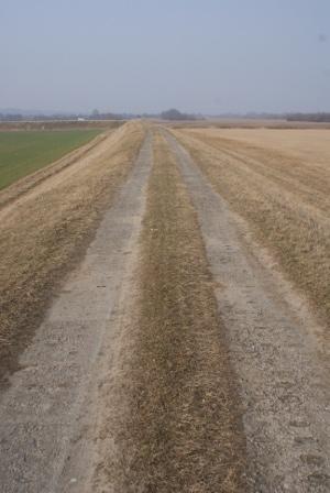 Droga z płyt betonowych przepuszczających wodę